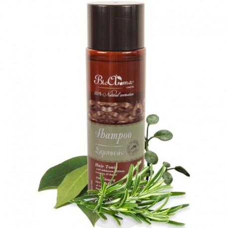 Натуральный шампунь для тонирования волос BioAroma
